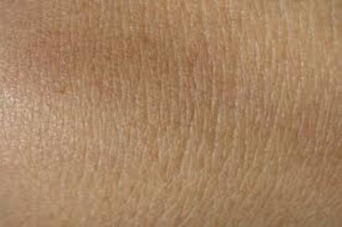 Bőrregenerálás