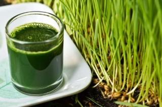 Élelmiszer adalékanyagok és növényvédő szerek ellenszerei