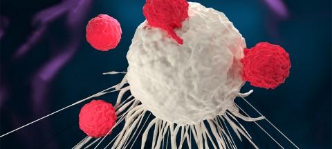 Immunkezelés daganatos betegeknek