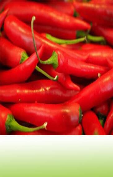bioTomi csodalatos fűszerkeverék chili