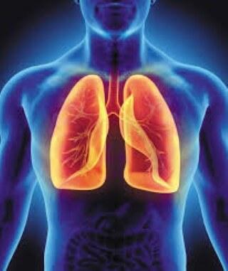 Ha kiterítenénk a tüdődet, hány négyzetmer lenne